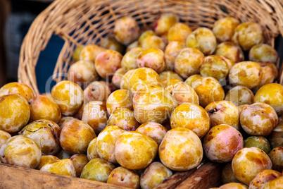 Organic emerald beaut plums in a basket
