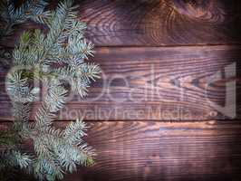 green spruce branch on a brown wooden background