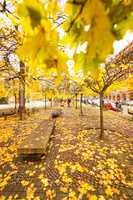 gendarmenmarkt berlin in autumn