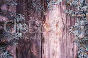 Spruce branches on a gray wooden background