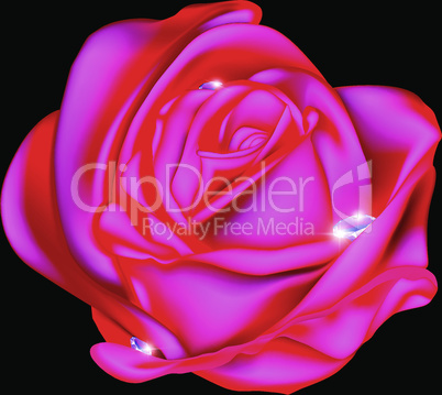 abstract rose and gems