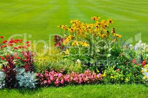 Summer flowerbed and green lawn.