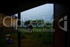 heavy rain in the summer in rural area