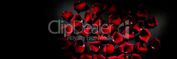 Scattered red rose petals