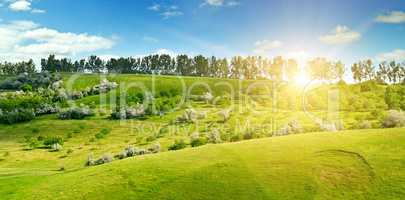 Hilly green fields and the sun on a blue sky. Wide photo.
