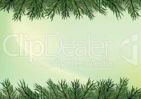 Gradient trendy green background with Christmas tree decoration