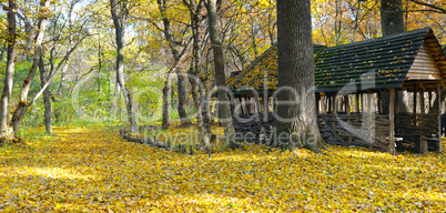 Shelter in the beautiful autumn forest. A bright sunny day.
