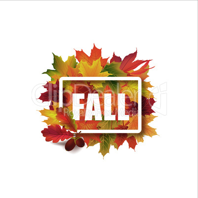 Fall leaves sign. Autumn leaf frame. Nature background.