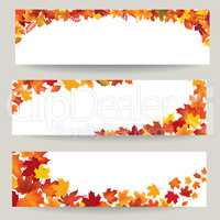 Fall leaves banner set. Swirl autumn leaf background. Nature decor