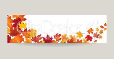 Fall leaf nature banner Autumn leaves season background