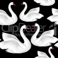 White birds seamless pattern. Wildlife background. Swimming swans