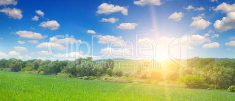 Green field and blue sky with light clouds. Above the horizon is