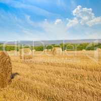 Straw bales on wheat field and blue sky.