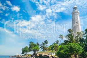 Lighthouse, lagoon and tropical palms (Matara Sri Lanka).