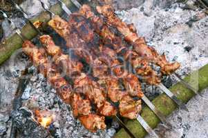 barbecue on the nature, cook meat on coals on a fire on skewers, to have a rest on the nature