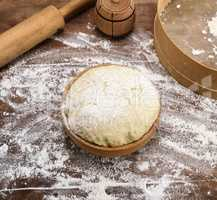 yeast dough from white wheat flour