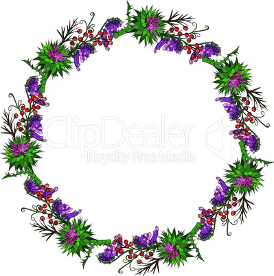 painted wreath of burdock flowers, mouse peas and branches with berries isolated on white background, empty space