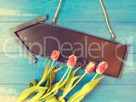 Springtime background with beautiful tulips