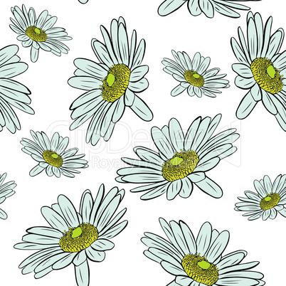 blossoming chamomile buds, seamless pattern
