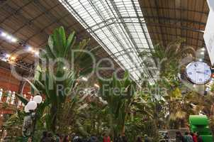view of the botanical garden inside the Atocha train station