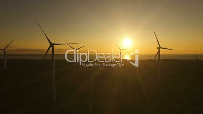 Aerial view of wind generators in the evening sky on the field. Wind generators rotate blades and extract electricity