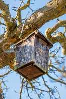 a birdhouse in a tree in wintertime