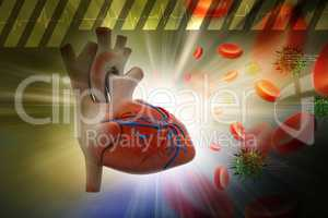 Human heart with platelets and virus in color background