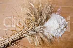 Ear of corn and flour