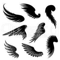 Wings Set. Angel symbol. Birds Sign