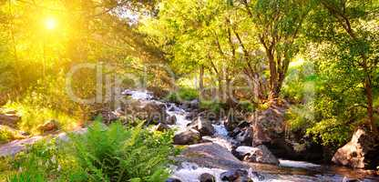 Mountain river, forest and bright sunrise. Wide photo.