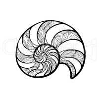 Seashell nautilus. Spiral pattern. Wave nautilus marine background