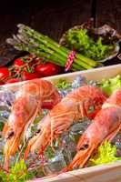 cooked argentine red prawns with salad on the ice