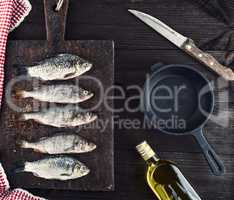 river fish crucian and perch