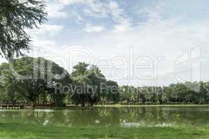 lake in the historical park in sukhothai