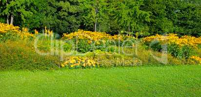 Summer park with beautiful flower beds. Wide photo.