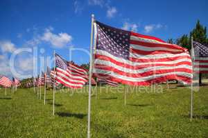 Patriotic display of multiple large American flags