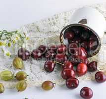 scattered ripe red berries cherries from a white iron mug