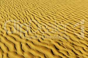 Sands of the desert.Sand dunes at sunset in the Sahara Desert