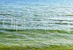 texture of the Black Sea water