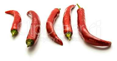 Fresh red chilli pepper isolated