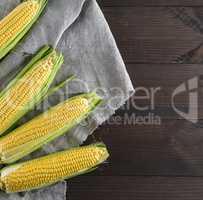 fresh ripe corn cobs on a gray linen napkin
