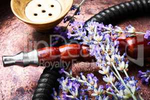 Asian tobacco hookah with lavender aroma