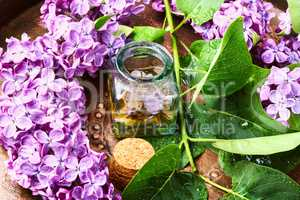 Essence of lilac flowers