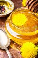 Dandelion honey and flowers dandelion