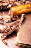 medicinal root Hedysarum