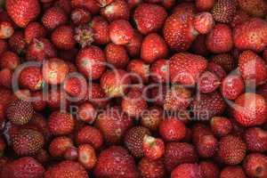 ripe strawberry background
