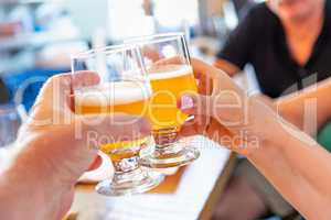Friends Toast With Small Glasses of Micro Brew Beer at Bar
