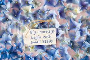 Hydrangea Flat Lay, Quote Big Journeys Begin Small Steps