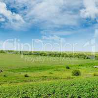 Hilly green field and windmill on blue sky background.