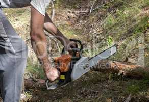 A man sawing a tree with a chainsaw in the woods.